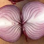 Cipolla conservante naturale