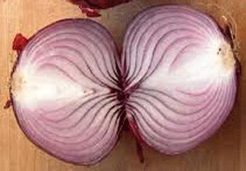 La cipolla, nuovo conservante naturale