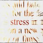 Stress 3 fasi