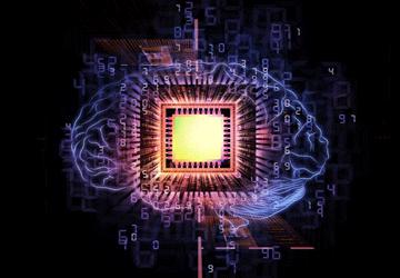 Cervello vs computer