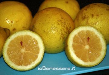 Benefici e proprietà dei limoni