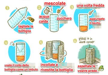 Rimedio contro le zanzare: trappola per zanzare fatta in casa